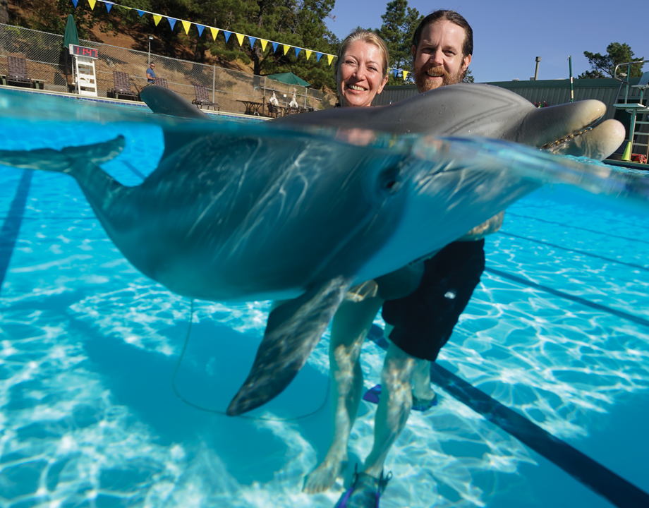 An animatronic dolphin may be the harbinger of a new era for aquariums that  rely on marine mammals for entertainment - ASME