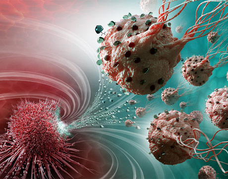 Magnetic Bacteria Kill Cancer Cells - ASME