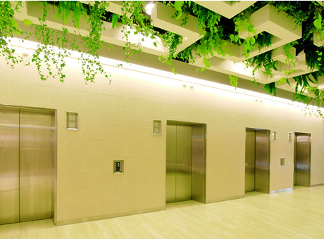 Image result for Eco-Friendly Lifts